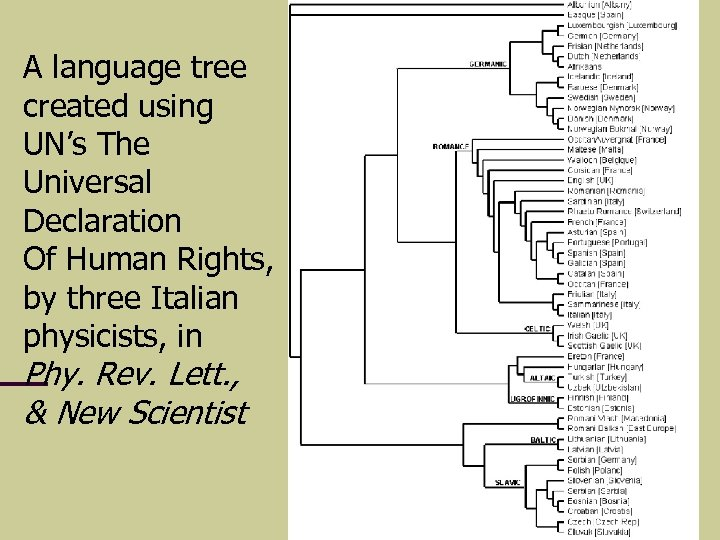 A language tree created using UN's The Universal Declaration Of Human Rights, by three