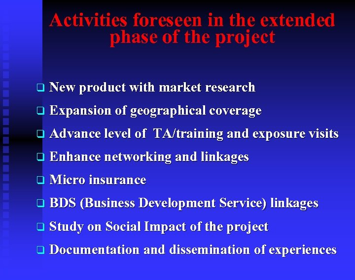 Activities foreseen in the extended phase of the project q New product with market