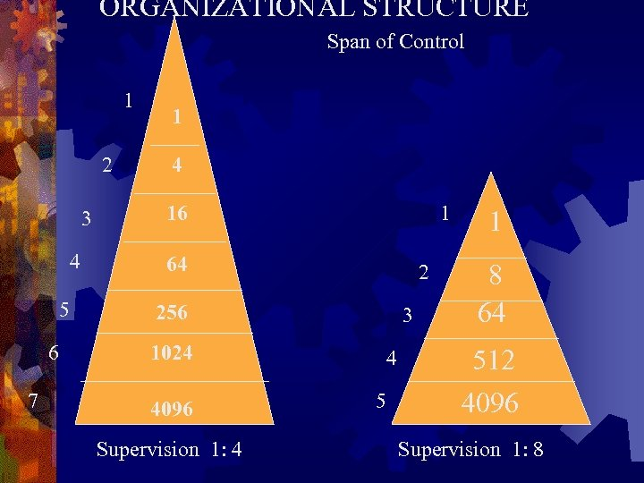 ORGANIZATIONAL STRUCTURE Span of Control 1 2 3 4 5 6 7 1 4