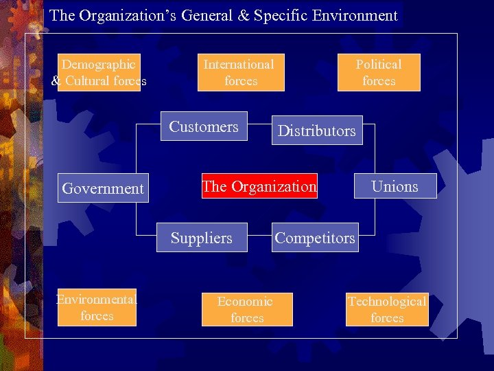 The Organization's General & Specific Environment Demographic & Cultural forces International forces Customers Government