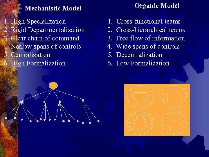 Organic Model Mechanistic Model 1. High Specialization 2 Rigid Departmentalization 3. Clear chain of
