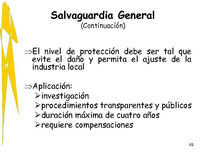Salvaguardia General (Continuación) ÞEl nivel de protección debe ser tal que evite el daño