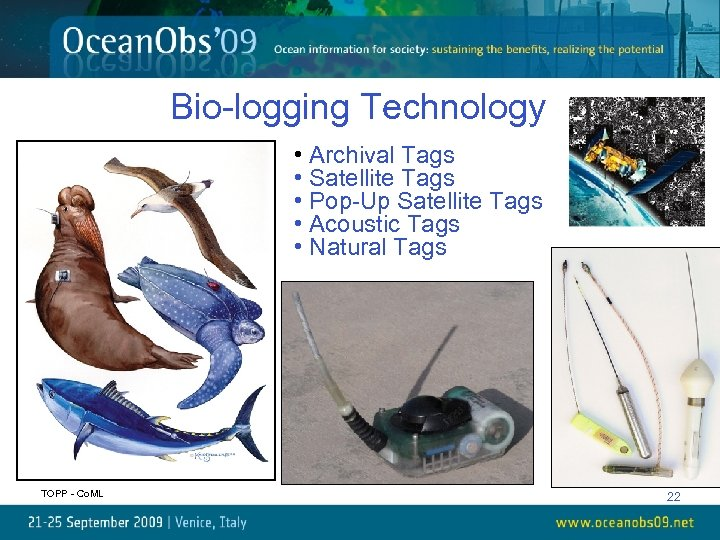 Bio-logging Technology • Archival Tags • Satellite Tags • Pop-Up Satellite Tags • Acoustic
