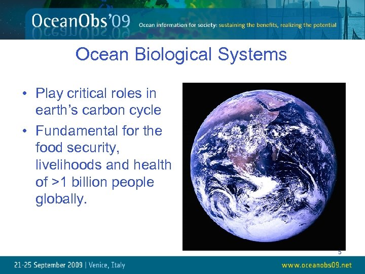 Ocean Biological Systems • Play critical roles in earth's carbon cycle • Fundamental for