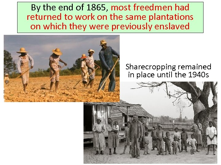 By the end of 1865, most freedmen had returned to work on the same