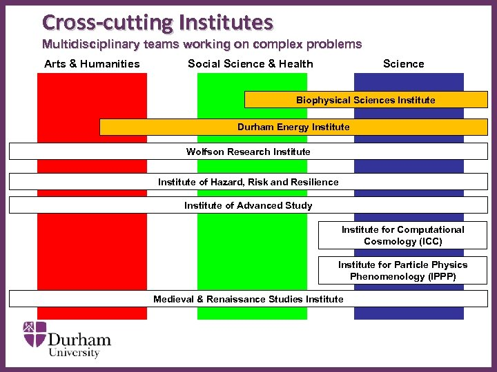 Cross-cutting Institutes Multidisciplinary teams working on complex problems Arts & Humanities Social Science &