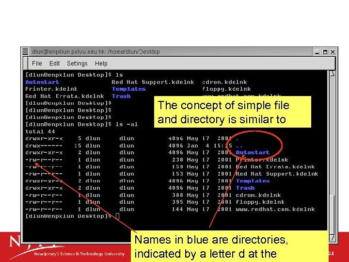 The concept of simple file and directory is similar to DOS Names in blue