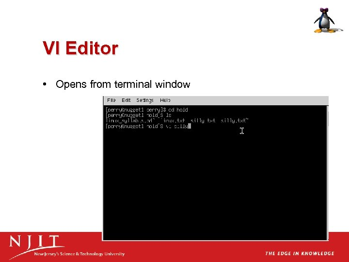 VI Editor • Opens from terminal window