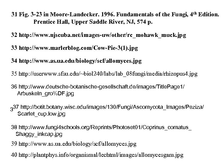 31 Fig. 3 -23 in Moore-Landecker. 1996. Fundamentals of the Fungi, 4 th Edition.