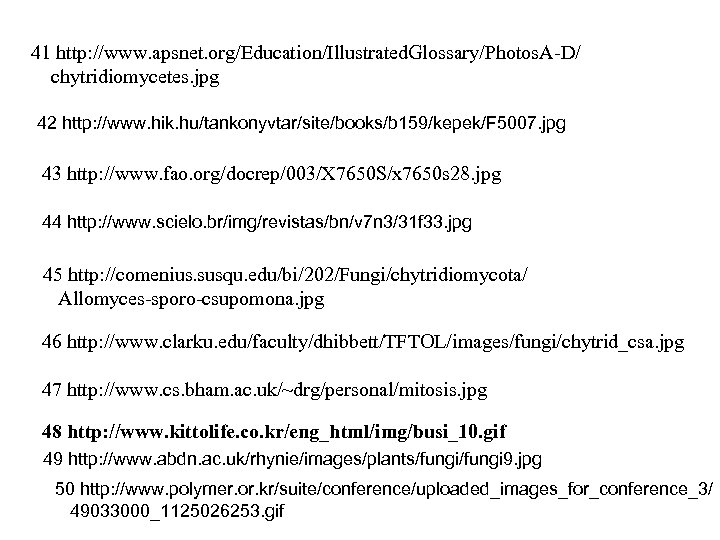 41 http: //www. apsnet. org/Education/Illustrated. Glossary/Photos. A-D/ chytridiomycetes. jpg 42 http: //www. hik. hu/tankonyvtar/site/books/b