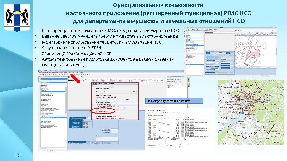 Функциональные возможности настольного приложения (расширенный функционал) РГИС НСО для департамента имущества и земельных отношений