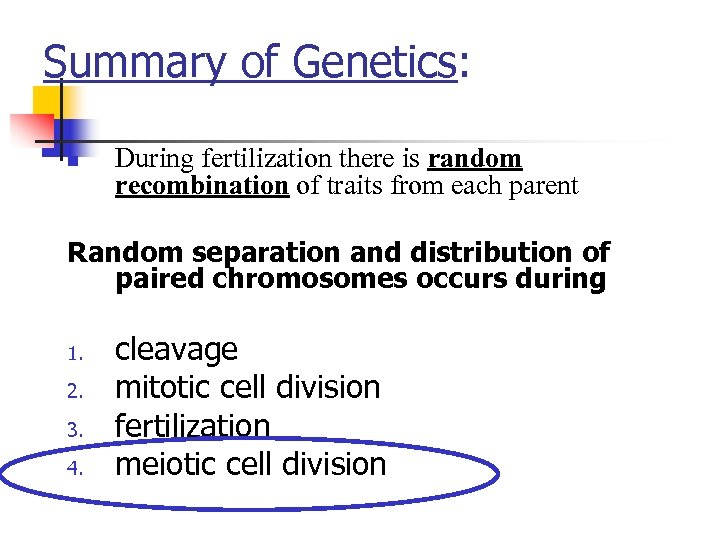 Summary of Genetics: n During fertilization there is random recombination of traits from each