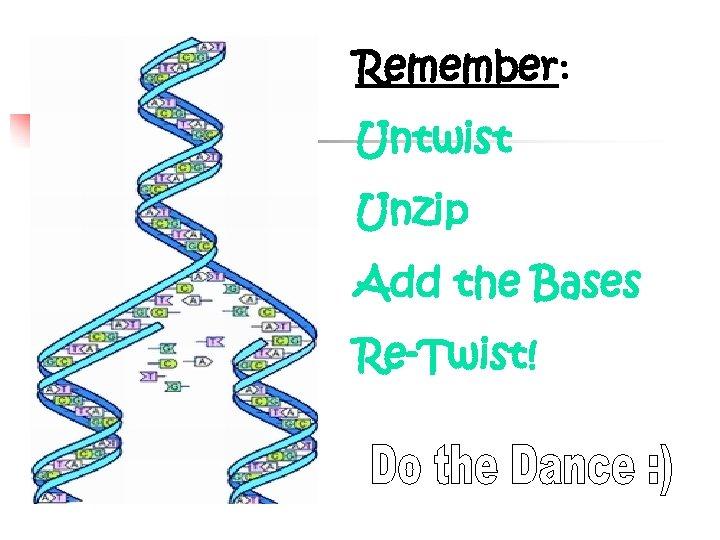 Remember: Untwist Unzip Add the Bases Re-Twist!