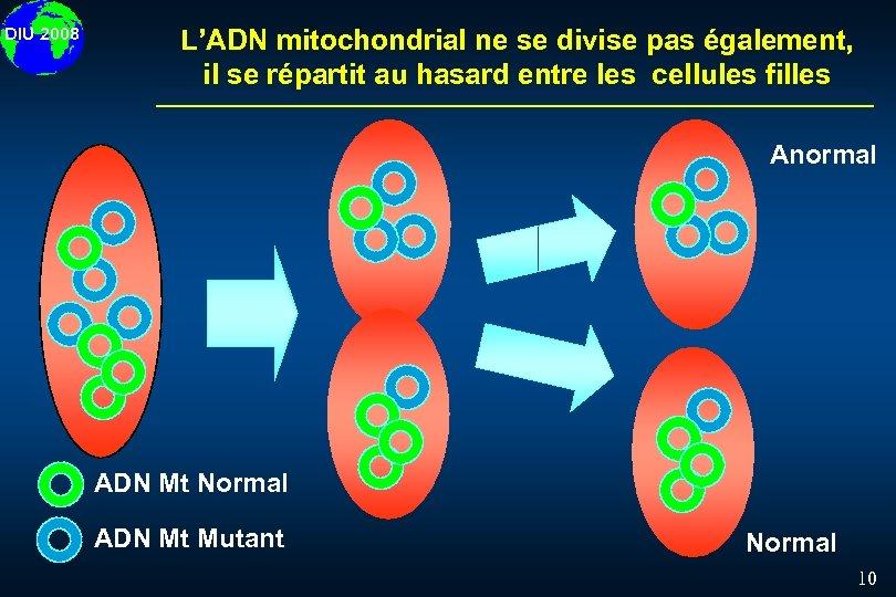 DIU 2008 L'ADN mitochondrial ne se divise pas également, il se répartit au hasard