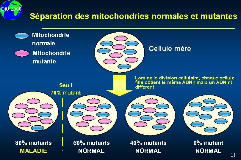 DIU 2008 Séparation des mitochondries normales et mutantes Mitochondrie normale Cellule mère Mitochondrie mutante