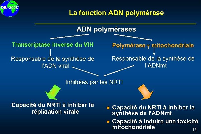 DIU 2008 La fonction ADN polymérases Transcriptase inverse du VIH Polymérase mitochondriale Responsable de