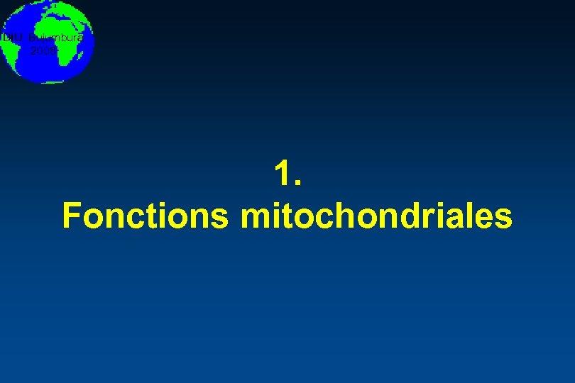 DIU Bujumbura 2008 1. Fonctions mitochondriales