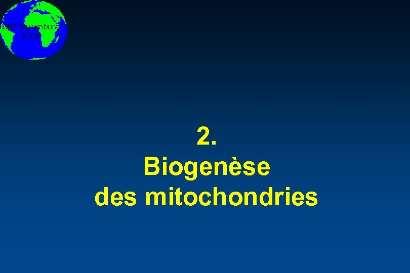 DIU Bujumbura 2008 2. Biogenèse des mitochondries