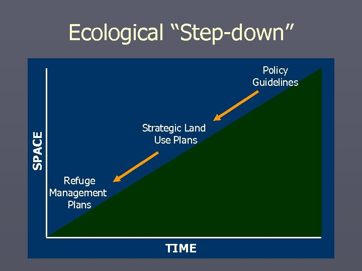 """Ecological """"Step-down"""" Policy Guidelines SPACE Strategic Land Use Plans Refuge Management Plans TIME"""