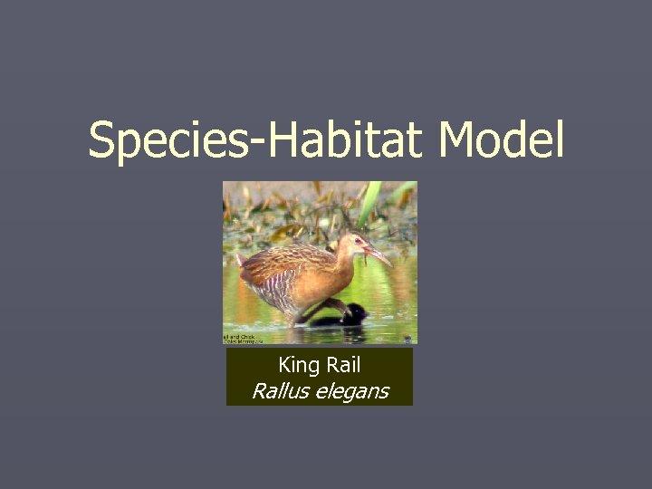 Species-Habitat Model King Rail Rallus elegans