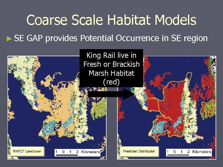 Coarse Scale Habitat Models ► SE GAP provides Potential Occurrence in SE region King