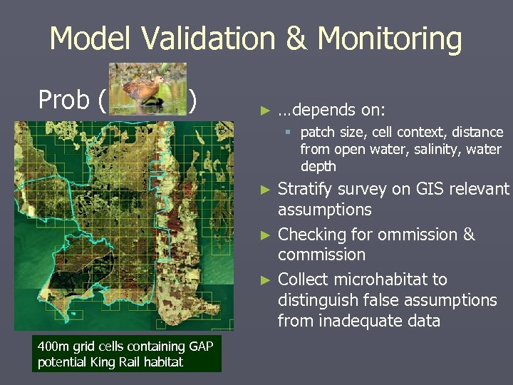 Model Validation & Monitoring Prob ( ) ► …depends on: § patch size, cell