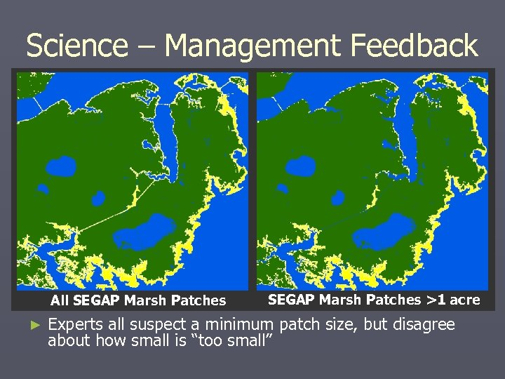 Science – Management Feedback All SEGAP Marsh Patches ► SEGAP Marsh Patches >1 acre