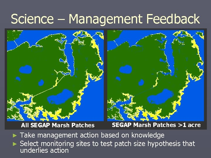 Science – Management Feedback All SEGAP Marsh Patches ► ► SEGAP Marsh Patches >1