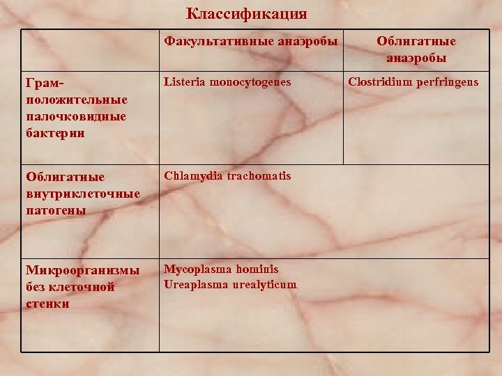 Классификация Факультативные анаэробы Грамположительные палочковидные бактерии Listeria monocytogenes Облигатные внутриклеточные патогены Chlamydia trachomatis Микроорганизмы