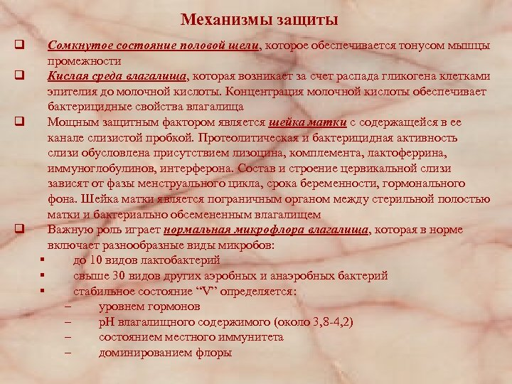 Механизмы защиты q q Сомкнутое состояние половой щели, которое обеспечивается тонусом мышцы промежности Кислая