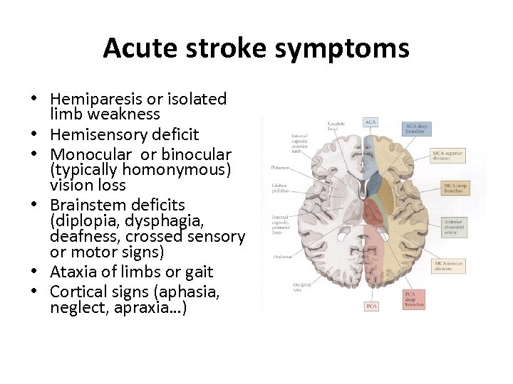 Acute stroke symptoms • Hemiparesis or isolated limb weakness • Hemisensory deficit • Monocular