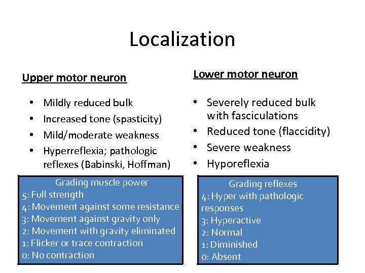 Localization Upper motor neuron • • Mildly reduced bulk Increased tone (spasticity) Mild/moderate weakness