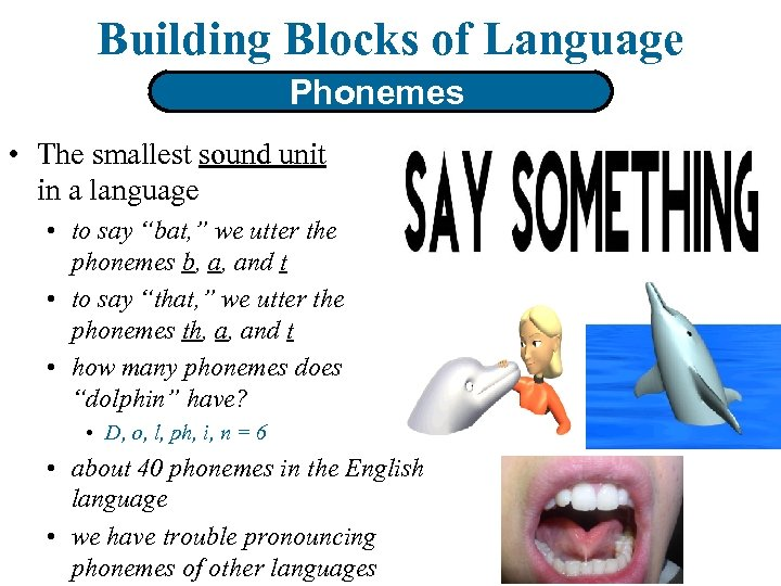 Building Blocks of Language Phonemes • The smallest sound unit in a language •