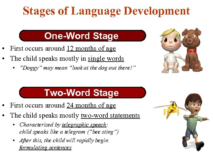Stages of Language Development One-Word Stage • First occurs around 12 months of age