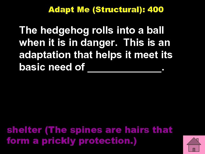 Adapt Me (Structural): 400 The hedgehog rolls into a ball when it is in