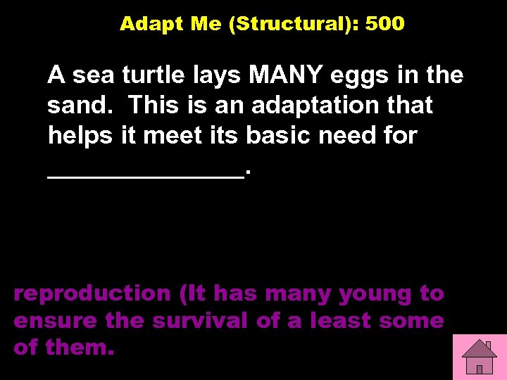 Adapt Me (Structural): 500 A sea turtle lays MANY eggs in the sand. This