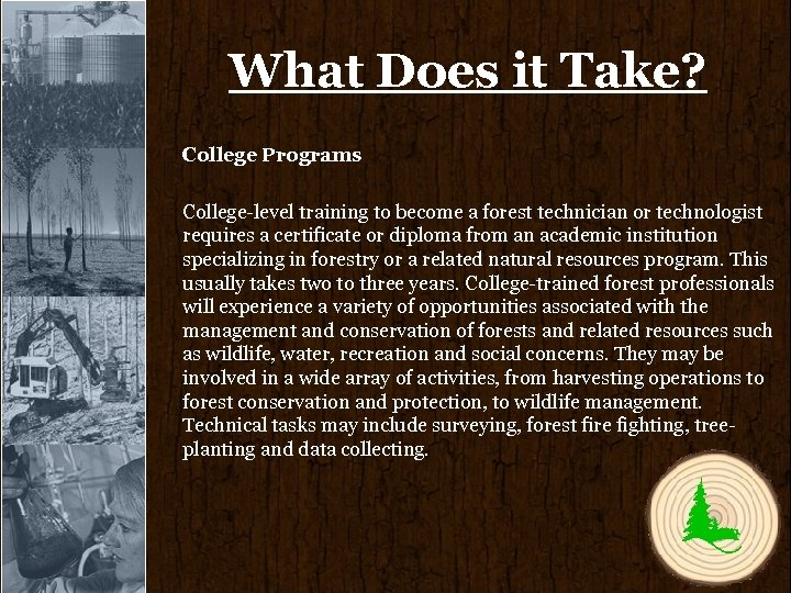 What Does it Take? College Programs College-level training to become a forest technician or