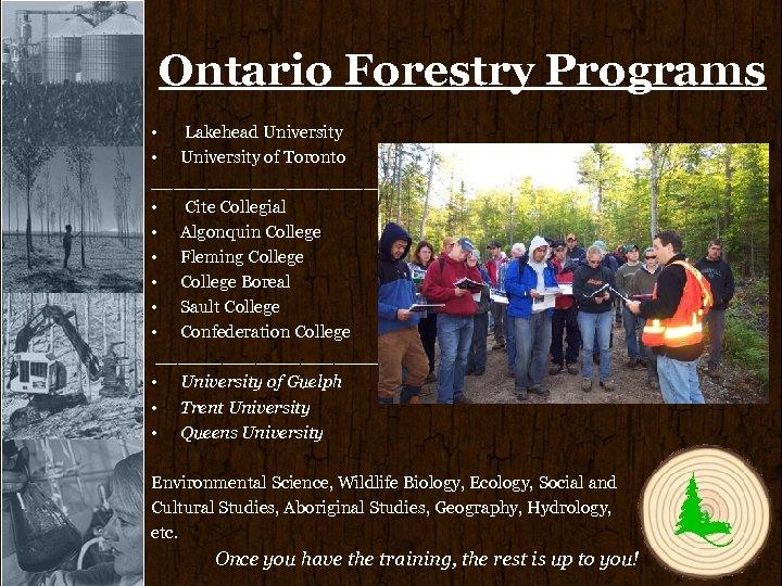 Ontario Forestry Programs • Lakehead University • University of Toronto ____________________________ • Cite Collegial