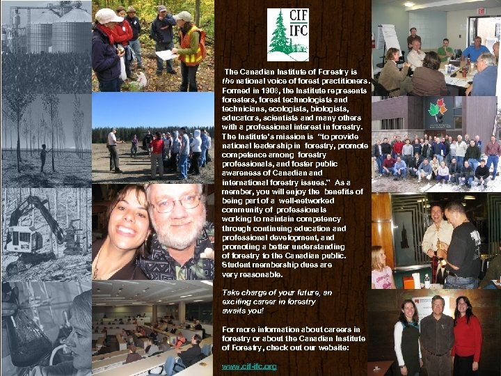The Canadian Institute of Forestry is the national voice of forest practitioners. Formed