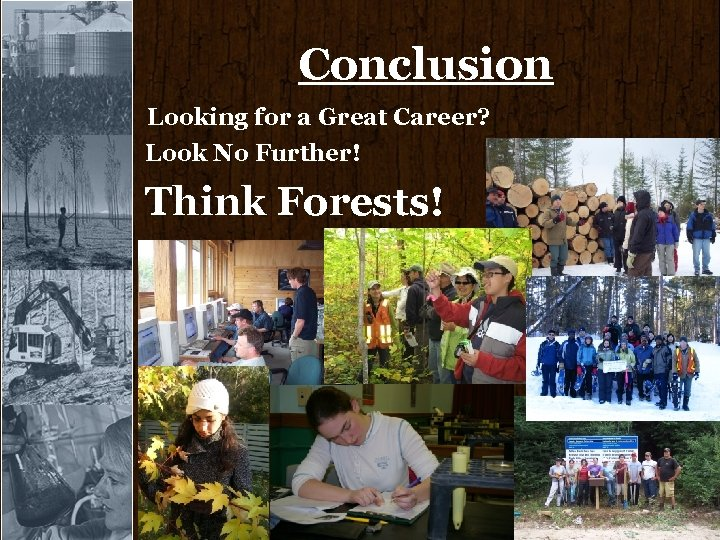 Conclusion Looking for a Great Career? Look No Further! Think Forests!