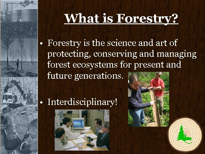 What is Forestry? • Forestry is the science and art of protecting, conserving and