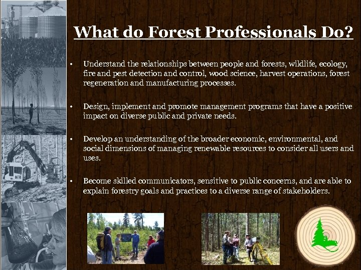 What do Forest Professionals Do? • Understand the relationships between people and forests, wildlife,