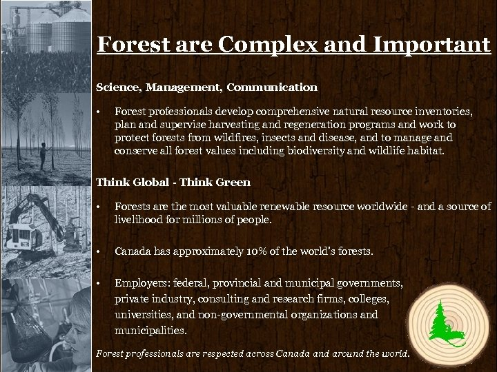 Forest are Complex and Important Science, Management, Communication • Forest professionals develop comprehensive natural