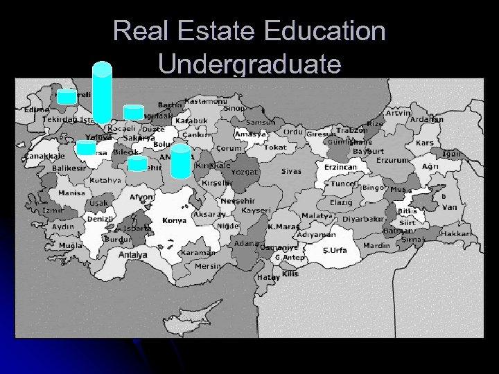 Real Estate Education Undergraduate