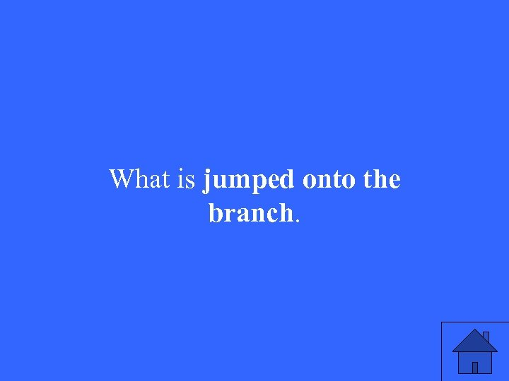 What is jumped onto the branch.