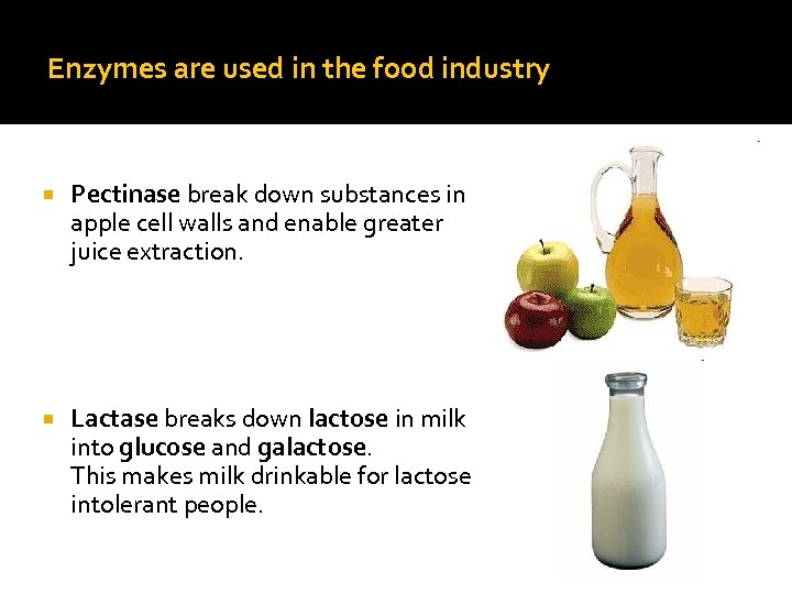 Enzymes are used in the food industry Pectinase break down substances in apple cell