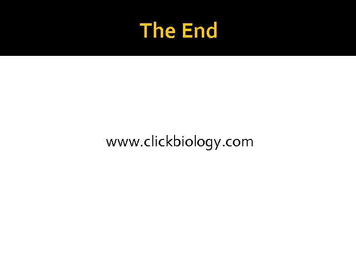 The End www. clickbiology. com