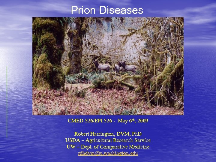 Prion Diseases CMED 526/EPI 526 - May 6 th, 2009 Robert Harrington, DVM, Ph.