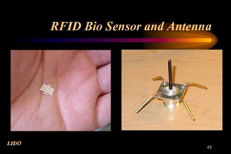 RFID Bio Sensor and Antenna LIDO 43