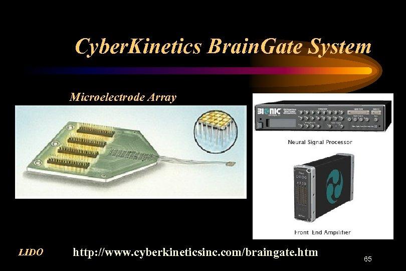 Cyber. Kinetics Brain. Gate System Microelectrode Array LIDO http: //www. cyberkineticsinc. com/braingate. htm 65